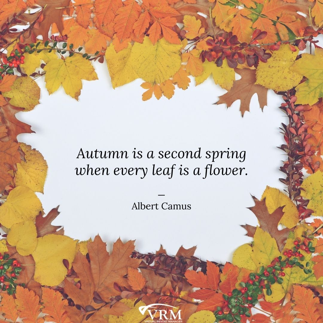 November VRM Monthly Marketing Planner and Free Desktop Wallpaper Calendars